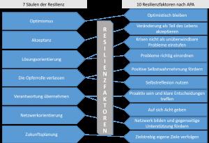 Resilienzfaktoren, Resilienzsäulen
