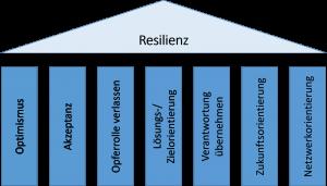 Resilienz, 7 Säulen